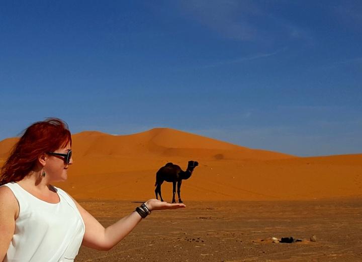 Marokko im November – Wüste ichkomme!