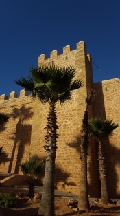 Rabat Kasbah mit Palme