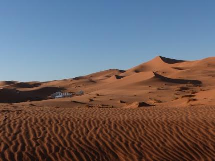 Camp in den Dünen