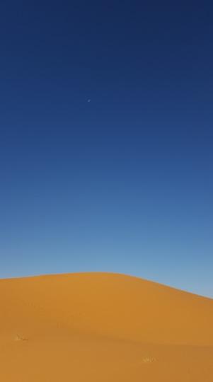 Wüste mit Mond