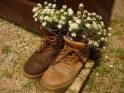 Wanderschuhe bepflanzt
